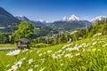 En Alpes en logia