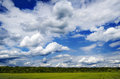Idyllic landscape with blue sky and green fields Stock Photography