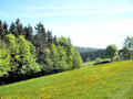 Idyllic landscape in the erzgebirge in germany rolling hills spring woods and meadows Royalty Free Stock Photography
