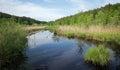Idyllic nature reserve with moor lake