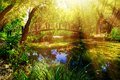 Idyllic scenario with a mountain river in the forest Stock Photo