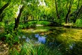 Idyllic scenario with a mountain river in the forest Stock Image