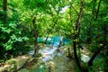 Idyllic scenario with a mountain river in the forest Royalty Free Stock Photo
