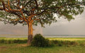 Idyllic scenery around lake albert in uganda stormy with rainbow africa at evening time Stock Photography