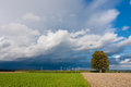 Idyllic scenery wind power stations and a huge tree in a stormy Royalty Free Stock Photos