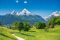 Idyllic spring landscape in the alps with meadows and flowers summer fresh green mountain pastures snow capped mountain tops Royalty Free Stock Images