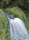 Idyllic triberg waterfalls scenery showing the in the black forest in southern germany at summer time Stock Photo