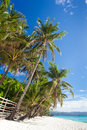 Idyllic tropical scene Stock Photography
