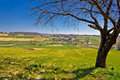 Idyllic village in green valley cabraji prigorje region of croatia Stock Image