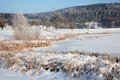 Idyllic winter landscape in thuringia with a frozen pond Royalty Free Stock Photo