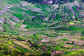 Ifugao rice terrasses of philippines Royalty Free Stock Image