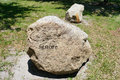 The ignore rock in the university of south florida usf Royalty Free Stock Photos