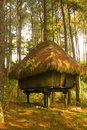 Igorot Hut Royalty Free Stock Photography
