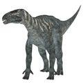 Iguanodon Herbivore Dinosaur Royalty Free Stock Photo
