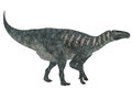 Iguanodon Side Profile Royalty Free Stock Photo