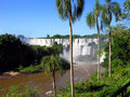 Iguazu falls in Argentina Royalty Free Stock Images