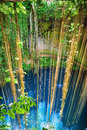 Ik kil cenote near chichen itza mexico stunning with transparent waters and hanging roots Stock Photography