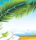 Il diario ed il cappello della femmina sotto una palma si ramifica Fotografia Stock