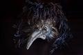 Il dottore venetian mask di peste di carnevale con le piume colorate Fotografie Stock