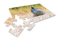 Illegal dumping in the nature - concept image in puzzle shape Royalty Free Stock Photo