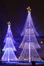 Illuminated Christmas trees Stock Photos