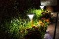 Illuminated Garden by LED Lighting Royalty Free Stock Photo