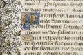 Illuminated manuscript detail Stock Images