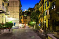 Illuminated Street of Riomaggiore in Cinque Terre Royalty Free Stock Images