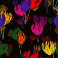 Illuminating tulips after midnight.