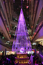 Illumination light showing in the winter at ometosando tokyo japan november on november Royalty Free Stock Photos