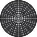 Cicular Optical Illusion Royalty Free Stock Photo