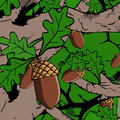 Illustrated acorn on tree in the forest Stock Photography