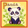 Illustrated alphabet letter p and panda animal for the kids Stock Images