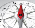 Illustrated compass dial Royalty Free Stock Photo