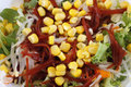 Illustrated salad with lettuce sweet corn beet tomato Royalty Free Stock Photography
