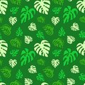 Illustrated seamless abstract pattern with green monstera leaves Royalty Free Stock Photo