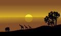 Illustration of an african landscape silhouette in lake Stock Photography