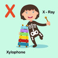 Illustration  Alphabet Letter X-X ray,Xylophone Royalty Free Stock Photo
