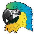 Illustration of Ara parrot Royalty Free Stock Images
