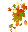 Illustration Autumn leaves Royalty Free Stock Photography