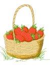 Illustration Of Basket
