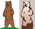 Illustration of a bear vector Stock Photos