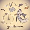 Illustration, Bird Gentleman. Attributes Dandy
