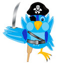 Illustration of the bird of the pirate on white background is insulated Royalty Free Stock Image