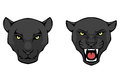 Illustration of a black panther head Stock Images