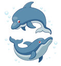 Illustration of Cartoon Dolphins Royalty Free Stock Image