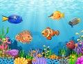 Cartoon fish under the sea Royalty Free Stock Photo