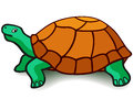 Illustration of a cartoon turtle Stock Images