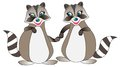 Illustration of couple of raccoons. Royalty Free Stock Photo