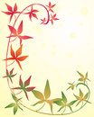 Illustration crimson gold green virginia creeper colorful foliage sunshine background Royalty Free Stock Images